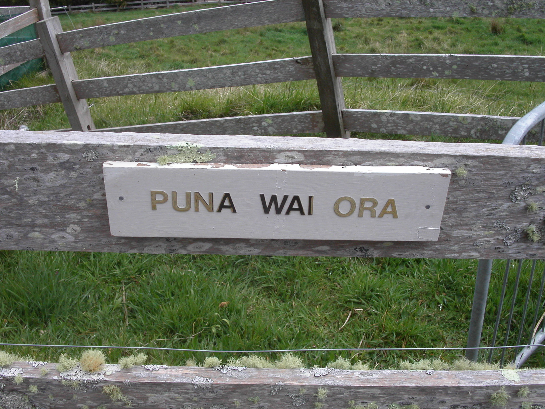 Part Two – Review of the Puna Wai Ora Cancer Retreat – Whangamata